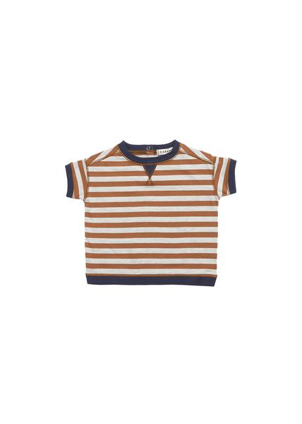 Baby Boys Brown Stripe Cotton T-shirt